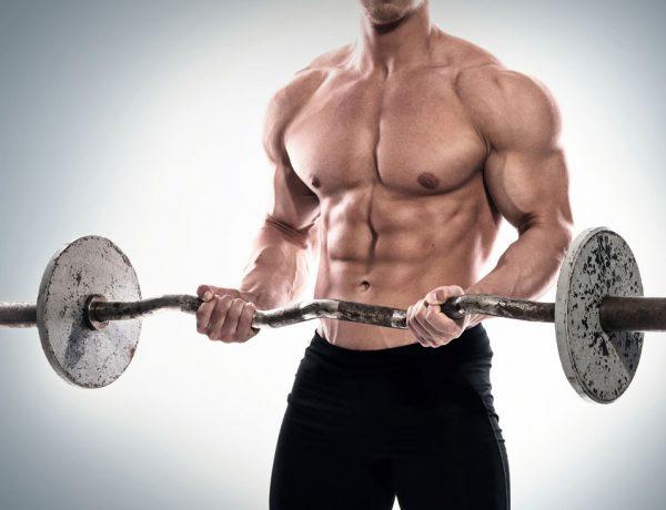 Muskelaufbau: Wie viel Protein ist sinnvoll?