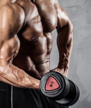 Proteinreiche Ernährung zum effektiven Muskelaufbau