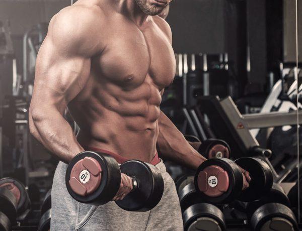 Muskelaufbau - Trainieren an Geräten oder mit freien Gewichten?