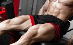 Woraus deine Beinmuskulatur besteht. Das solltest du wissen.