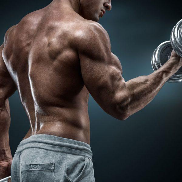 Die richtige Ernährung für den Muskelaufbau: Hochwertiges Protein