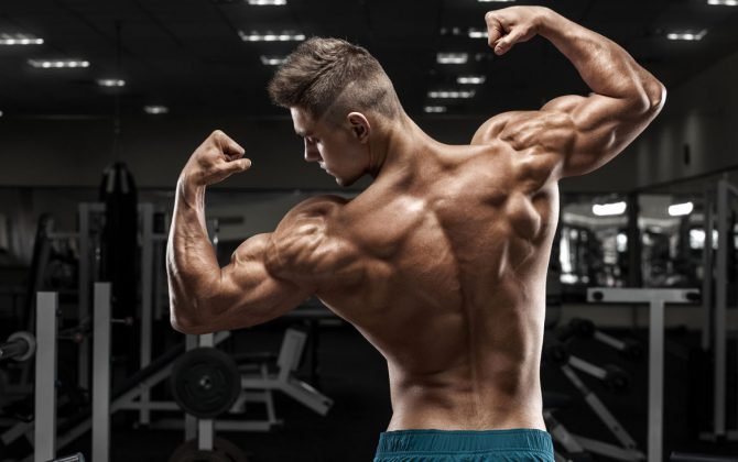 Diät, um vegetarische Muskelmasse zu gewinnen