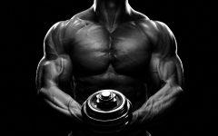 Muskelpump: die Ansammlung von Blut in der Muskulatur